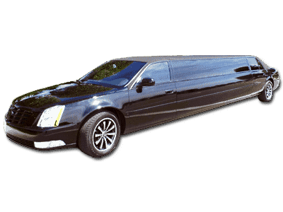 Medium Black Classic Limo Florida